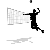 logo_volleyball